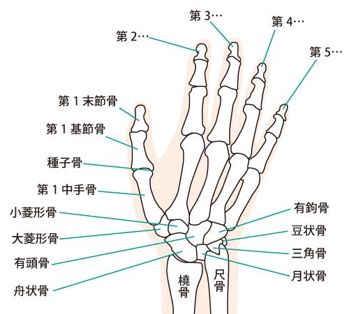 手首の痛みの改善法